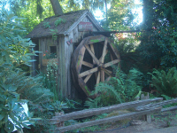 Old Water Wheel at Lattin's Country Cider Mill